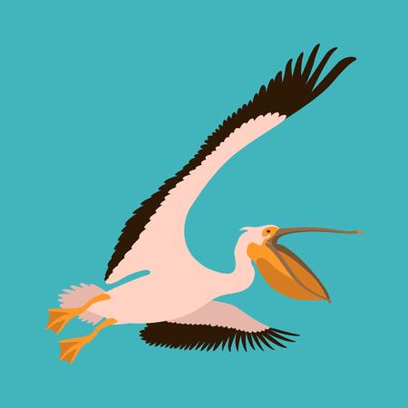 Roseate pelican vector illustration flat style profile side.