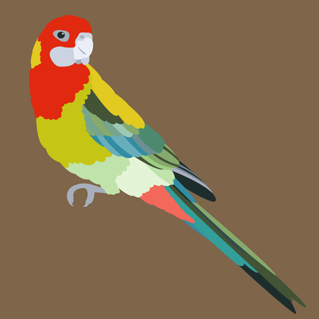 bird parrot vector illustration flat style profile side  Stock Illustratie
