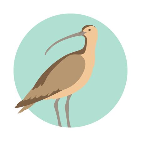 Curlew bird vector illustration flat style profile side.  イラスト・ベクター素材