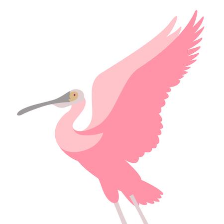roseate spoonbill bird vector illustration flat style profile