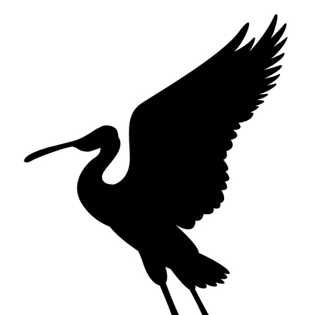 roseate spoonbill bird vector illustration black silhouette profile