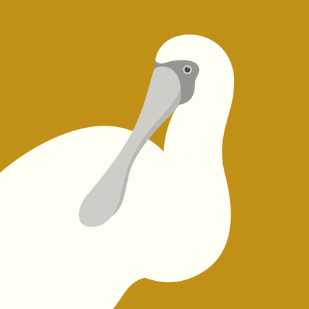 A spoonbill ibis head vector illustration flat style profile side Illustration