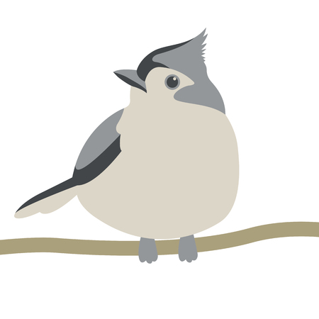 tit bird vector illustration flat style  front side