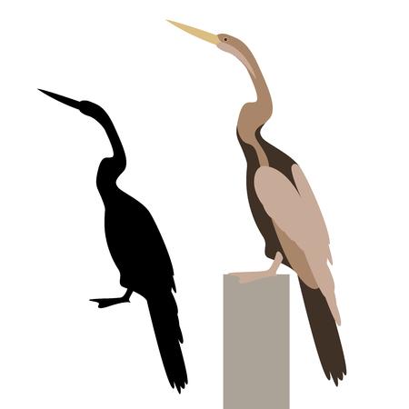 Cormorant vector illustration flat style profile side black silhouette