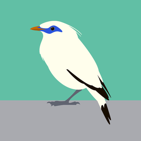 Bali mynah bird vector illustration flat style profile side