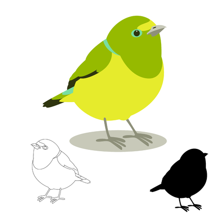 Tanager chlorophonia vector illustration flat style, profile side black silhouette.