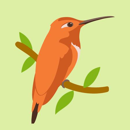 bird  red hummingbird vector illustration flat style  profile