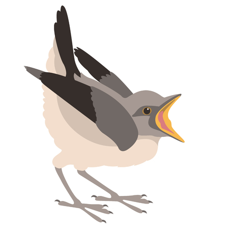 bird nestling vector illustration flat style profile side Illustration
