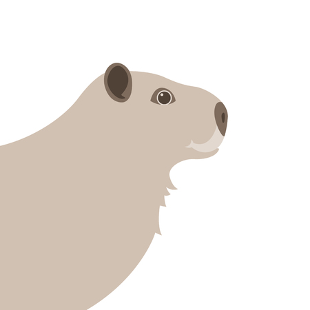 capybara head vector illustration flat style profile side