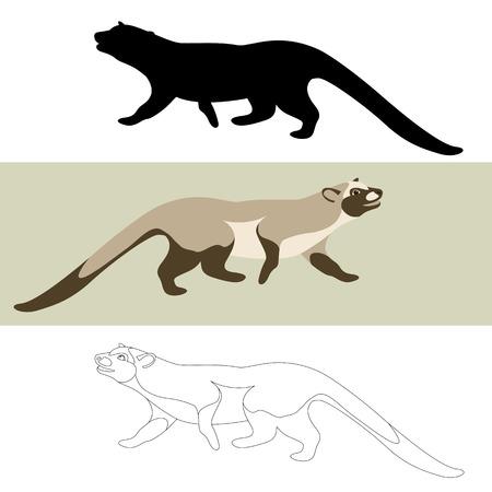 musang vector illustration flat style black silhouette set