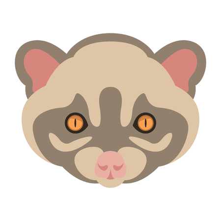 Musang head face vector illustration, flat style.