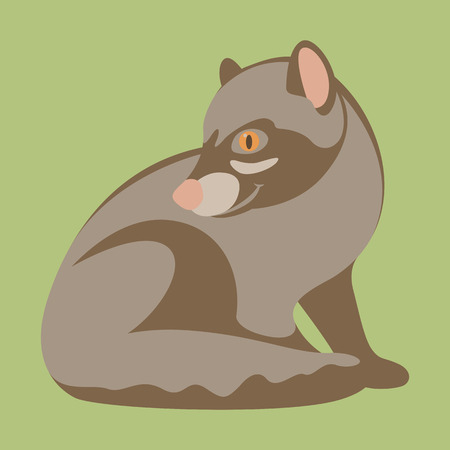 Musang vector illustration, flat style.