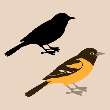 uccello oriole illustrazione vettoriale stile piatto silhouette nera