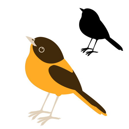Bird robin vector illustration flat style black silhouette