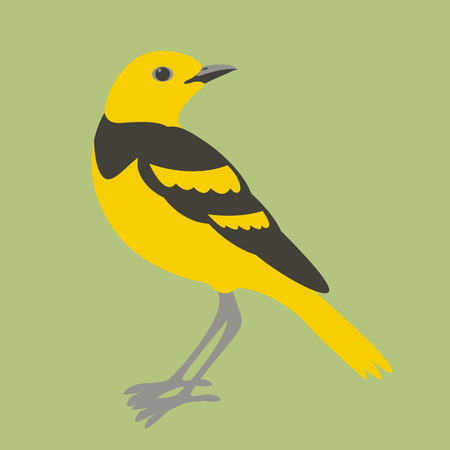 Golden pipit vector illustration flat style profile side
