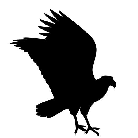 caracara eagle vector illustration black silhouette profile side