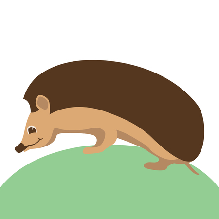 hedgehog face head vector illustration flat style  profile side
