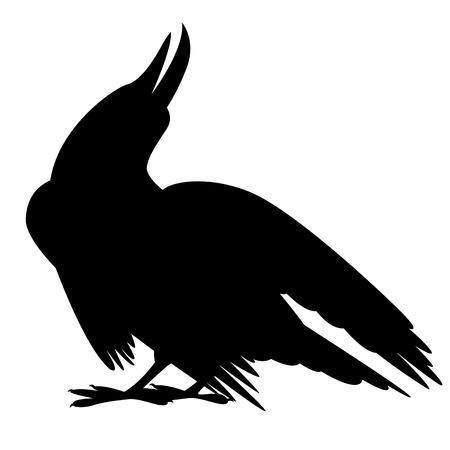 bird crow vector illustration black silhouette profile side