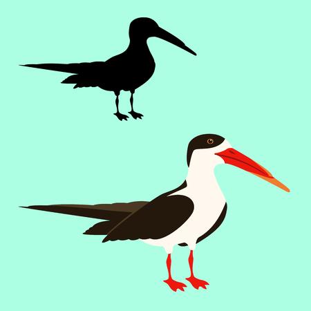 black skimmer bird vector illustration flat style black silhouette
