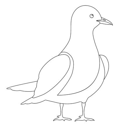 gull vector illustration  line drawing profile side coloring Illustration