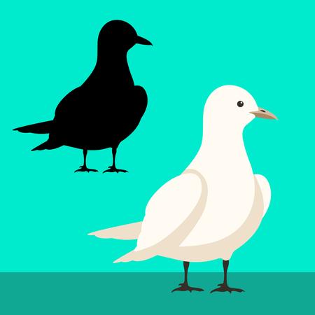 gull vector illustration flat style black silhouette set