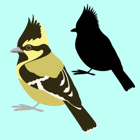 himalayan tit bird vector illustration flat style black silhouette set