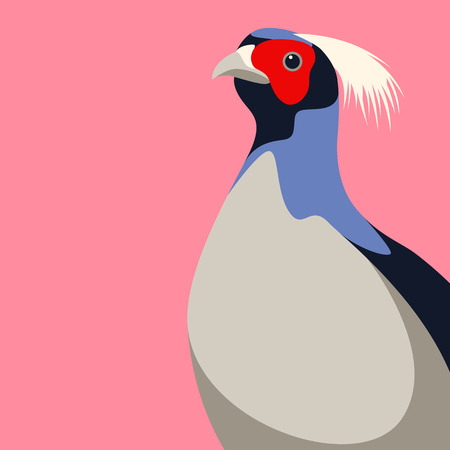 pheasant head vector illustration flat style front side