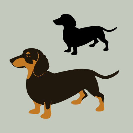 teckel hond vector illustratie vlakke stijl zwarte silhouet set