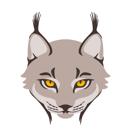 lynx  face vector illustration flat style front side