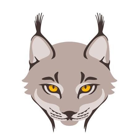 lynx face vector illustration style plat face avant