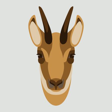 chèvre chamois visage tête vector illustration style plat face avant
