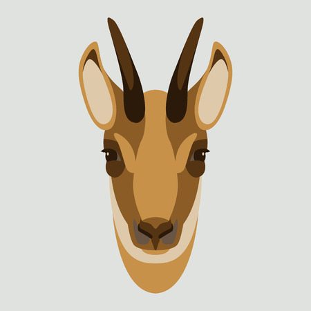 goat chamois face head vector illustration flat style front side Illustration