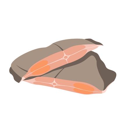 fish flounder meat steak vector illustration flat style Illustration
