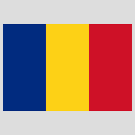 romania  flag on gray background vector illustration flat
