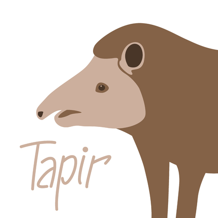 animal tapir vector illustration  flat style  profile side