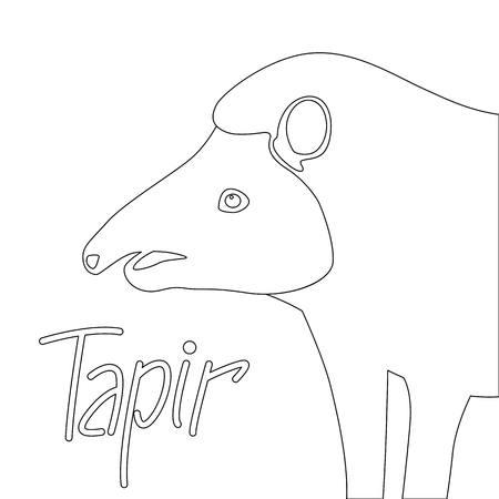 tapir vector illustration coloring book lining draw profile side