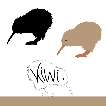 kiwi bird vector illustration flat style black silhouette set 일러스트
