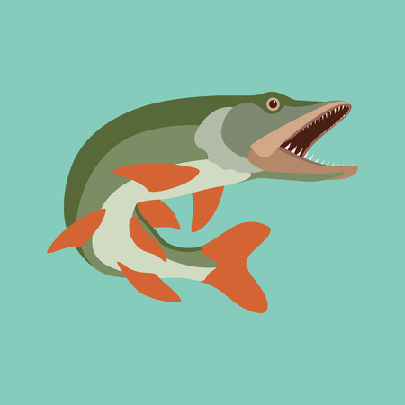 fish pike vector illustration flat style profile side