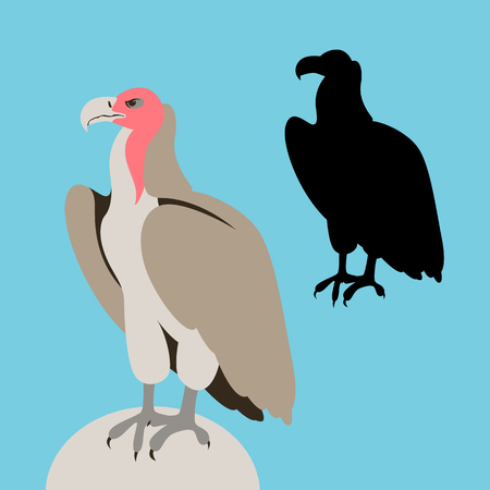 vulture bird vector illustration flat style black silhouette set Vecteurs