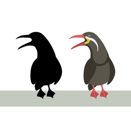 inca tern  vector illustration flat style profile side black silhouette Illustration