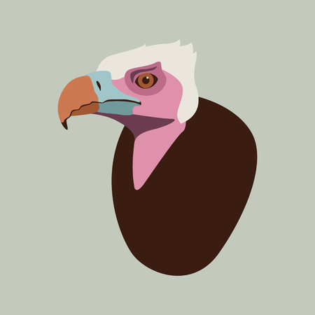 vulture head vector illustration flat style profile side