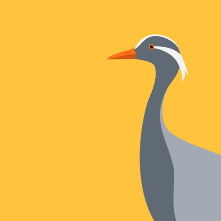 demoiselle crane head vector illustration flat style profile side