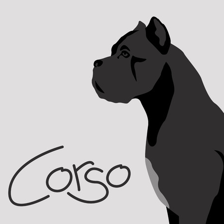 dog corso vector illustration flat style profile side Vettoriali