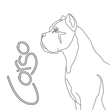 dog corso  vector illustration flat style  coloring book Illustration