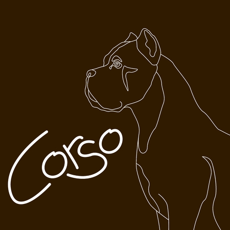 dog corso  vector illustration flat style profile side