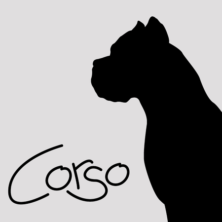 dog corso  vector illustration flat style black silhouette Vettoriali