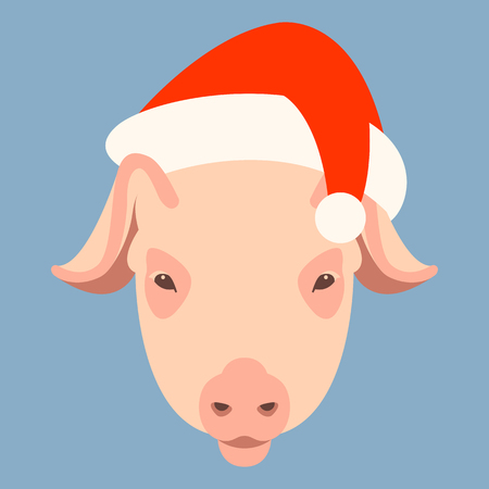 Pig in a cap of Santa Claus  vector illustration flat style