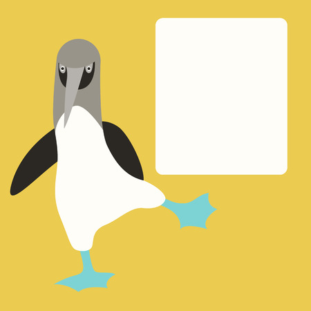 blue footed booby  vector illustration flat style   front side Illustration