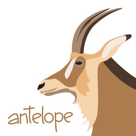 antelope  head  vector illustration flat style profile side Illustration