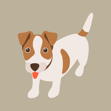 puppy jack russell vector illustration flat style front side